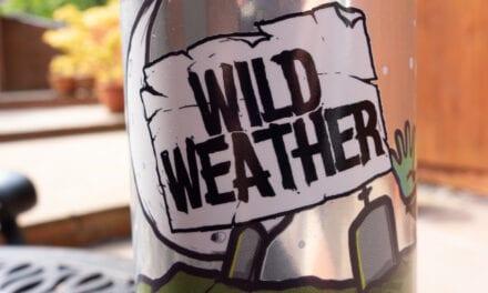 Wild Weather – Damn Dead Cucumber Sour